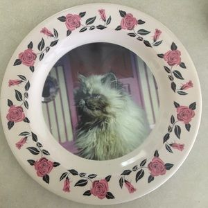 Image result for umbridge plates